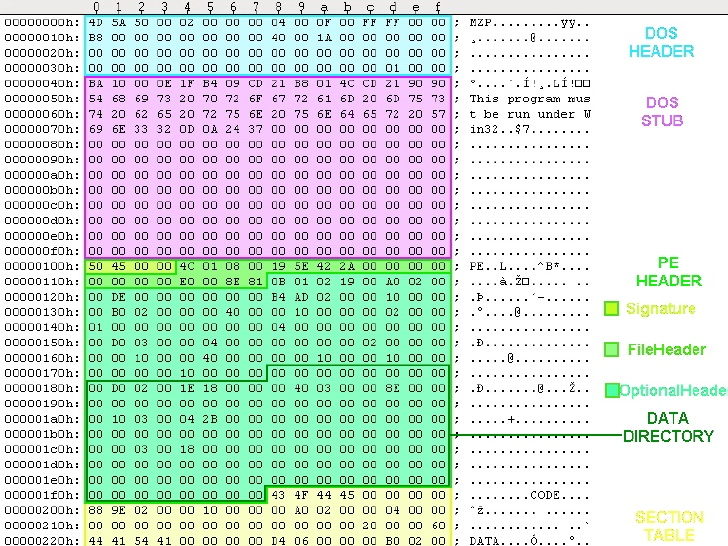 Portable Executable opened in hex editor